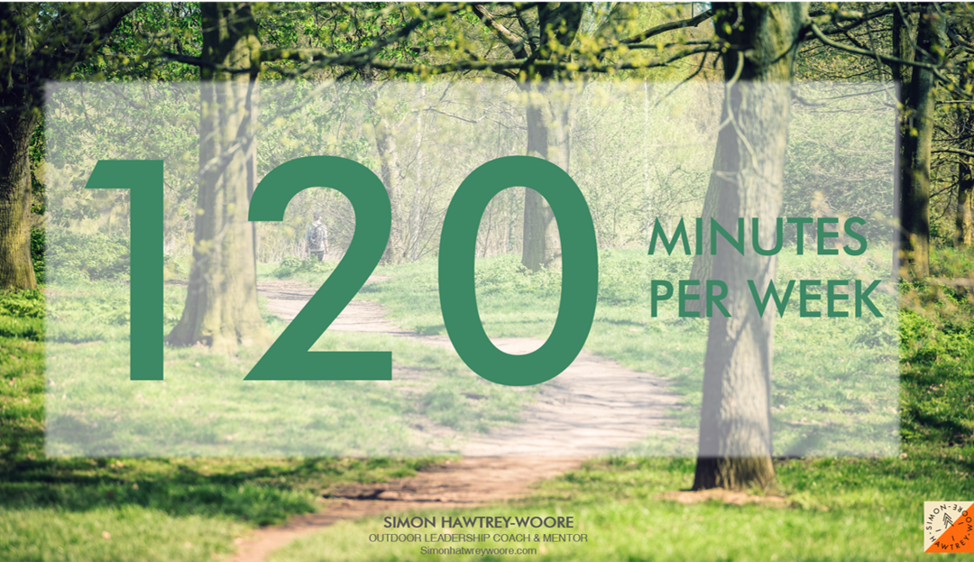 Ecopsychology: The effect of 120 minutes per week in nature